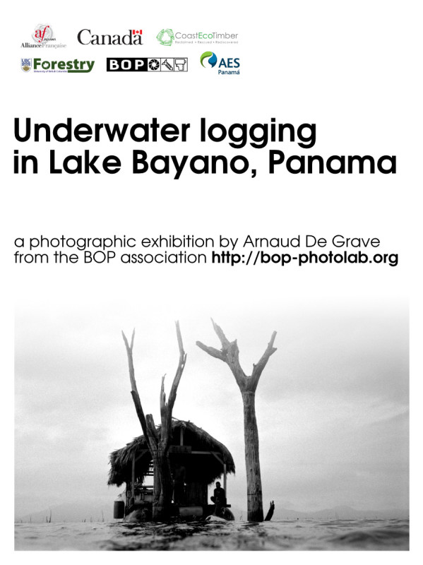 Underwater logging - AF Flyer
