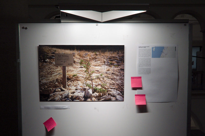"Installation @ Latsis Symposium June 2018 - ""Reforesting Lebanon, one cedar at a time"" story"